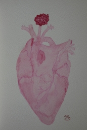 Heart. Watercolour