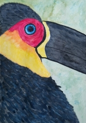 Urban Toucan. Watercolour